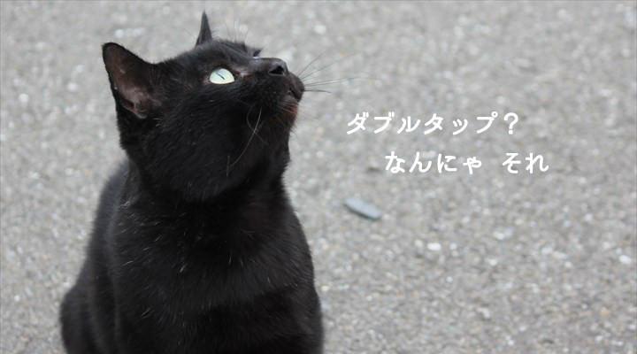 黒猫が「ダブルタップ?なんにゃそれ」とつぶやいている